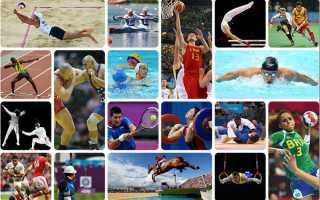 Интересные факты о спорте для детей. Самые смешные и интересные факты в мире спорта