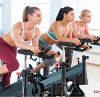 Велотренажер польза для ног. Польза велотренажера для здоровья и фигуры