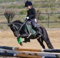 Верховая езда: польза и вред для здоровья. Про конный спорт для детей — польза телу и душе