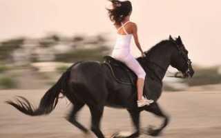 Польза и вред верховой езды. Верховая езда на лошади для женщин: похудение, здоровье и гармония
