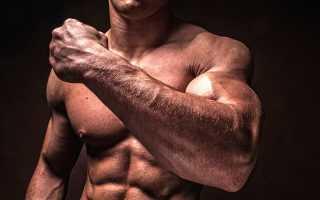 Связки и сухожилия бойца. Как эффективно укрепить сухожилия и связки