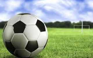 Сколько весит футбольный мяч разных размеров? Сколько весит мяч
