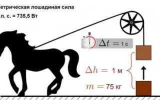 Чему равна одна лошадиная сила. Что такое Лошадиная сила? Что же это за единица, чему она равна