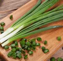 Можно ли сушить зеленый лук сушилке. Как сушить зеленый лук в электросушилке