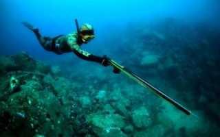 Как выбрать ружье для подводной охоты: советы новичкам и бывалым охотникам. Подводная охота для начинающих: Первые шаги начинающего подвоха