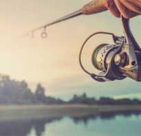 Будет день рыбака в году. День рыбака: история и традиции праздника. Приметы на день рыбака