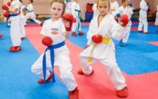 Каратэ для девочек за и против. Каратэ для девочек: опасный спорт или возможность гармоничного развития? Осваиваем стойки, равновесие и ударную мощь