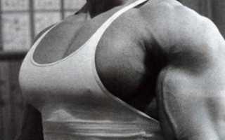 Что качает упражнение пуловер. Пуловер — упражнение для развития грудных и широчайших мышц спины. Нужно периодически шокировать мышцы тела новыми программами