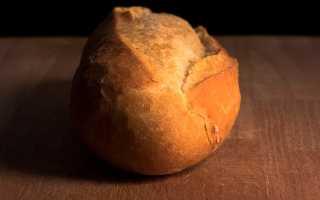 А беляев вечный хлеб краткое содержание. Вечный хлеб