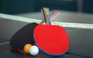 Бизнес план пинг понг образец с расчетами. Идея открыть клуб настольного тенниса