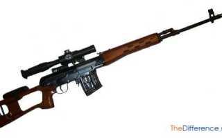 Чем отличается карабин от ружья. Отличие карабина от винтовки. Технические характеристики и разборка оружия