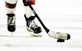 Какой вид хоккея возник в канаде. История развития хоккея в россии. Судьи в хоккее с шайбой