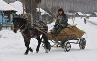 Что означает поговорка не в коня корм. Не в коня корм — Русская idea