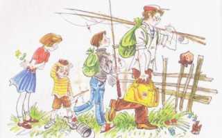 Цветовая гамма картины не взяли на рыбалку. По картине О. Поповича «Не взяли на рыбалку» (Школьные сочинения)