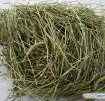 Чем отличается сено от соломы. Разница между сеном и соломой. Чем сено отличается от соломы