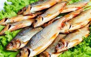 Сушеная плотва рецепт. Рецепт приготовления вяленой плотвы с пошаговыми фото в домашних условиях. Какие виды рыбы можно вялить