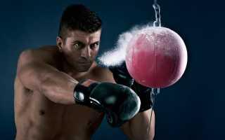 Спортивные разряды и звания в порядке возрастания. Кандидат в мастера спорта по боксу: это звание или разряд, условия получения, удостоверение