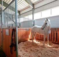 Летние денники для лошади своими руками. Каким должен быть денник: размеры лошади и размеры стойла. Проекты конюшен с загонами