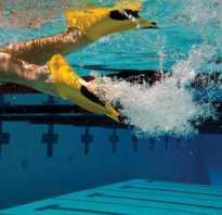 Как определить размер ласт для плавания. Ласты для бассейна. Подбор размера по цели приобретения