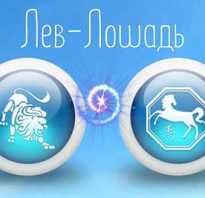 Львы рожденные в год Лошади: гороскоп и характеристика знака зодиака. Мужчина-лошадь — совместимость