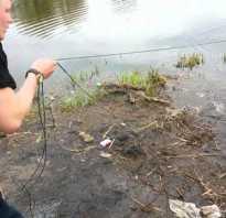 Сеть дорожка рыболовная как ставить. Как ловить рыбу на дорожку? Какой груз лучше
