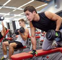 Стоит ли ходить в фитнес клуб каждый день? Зачем ходить в тренажерный зал: что это дает