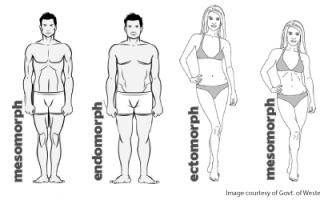 Как эктоморфу прорабатывать руки на набор массы. Программа тренировок для эктоморфа в домашних условиях. Грудь, Трицепс, Пресс