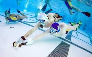 Подводный хоккей. Подводный хоккей – история, основные понятия и правила игры
