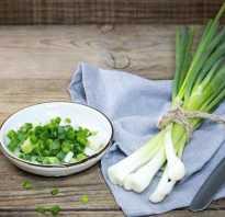 Зеленый лук на зиму заготовки рецепты лучшие. Зеленый лук на зиму – заготовки: лучшие рецепты. Как правильно заморозить, засолить, замариновать, сушить зеленый лук на зиму, сохранить свежим? Рецепты из зеленого лука с укропом, заправки, пасты, с раститель
