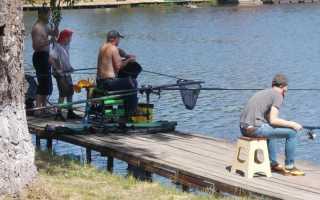 Бизнес план готовый с расчетами платной рыбалки. Бизнес план платной рыбалки. Бизнес платная рыбалка