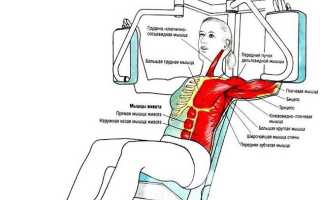 Упражнения на зубчатые мышцы пресса. Зубчатые мышцы. Комплекс упражнений