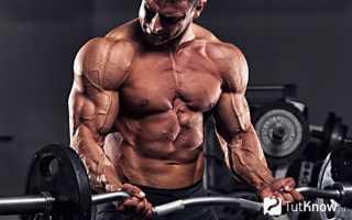 Как увеличивать нагрузку начинающему спортсмену. Как и когда увеличивать рабочий вес: практические советы