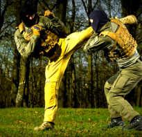 Бесконтактный бой гру. Рукопашный бой спецназа ГРУ: миф или реальность