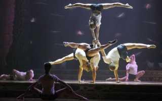 Акробатика: виды, польза, противопоказания. акробатика для детей и взрослых. Основные виды гимнастики. Оздоровительная и спортивная гимнастика
