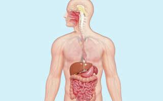 Лечебная физкультура при заболевании желудочно кишечного тракта. ЛФК при заболеваниях желудочно-кишечного тракта: упражнения для желудка и кишечника. Движение — жизнь