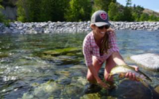 Ловить рыбу в мутной воде значение фразеологизма. Щука в мутной воде – поведение, приманки, как поймать. Видеть во сне, как кто-то ловит рыбу руками