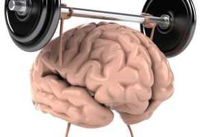 Мозг — это мышца. Связь мозг-мышцы. Качаемся правильно