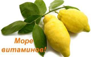 Сжигание жира с помощью лимона. Вода Сасси: лимон сжигает жир