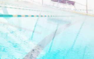 Цитаты про плавание для детей. Статусы про плавание и пловцов