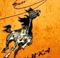 В каких произведениях встречаются почтовые лошади. Росинант и другие. Знаменитые лошади в мировой литературе