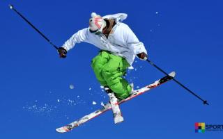 Виды фристайла на лыжах. Фристайл. Лица и персоналии вида спорта Российской Федерации