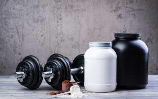 Как есть спортивное питание. Как правильно принимать спортивное питание – гайд