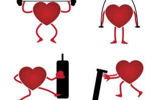 Упражнения для повышения выносливости сердца. Тренировка сердца и сосудов. Комплекс упражнений и рекомендации профессионалов. Полезная и вредная гипертрофия сердца
