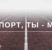 Лучшие спортсмены беларуси презентация. История «самых» белорусских олимпийцев: от Руммеля до Карстен