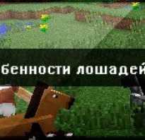 Как называется лошадь в майнкрафте уровень 16. Виды и их особенности. Покраска конской брони