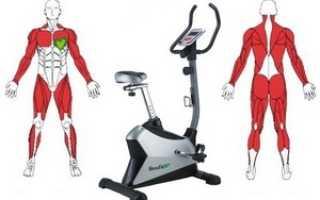 Какие мышцы задействованы при езде на велотренажере. Какие мышцы тренирует велотренажер