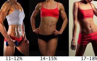 Правильное соотношение жира, мышц и воды в организме. Процент жира в организме – важный критерий здоровья и красоты
