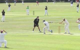 Правила игры в крикет кратко. Правила игры в крикет