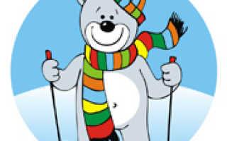Загадки зимние виды спорта. Увлекательные загадки про лыжи